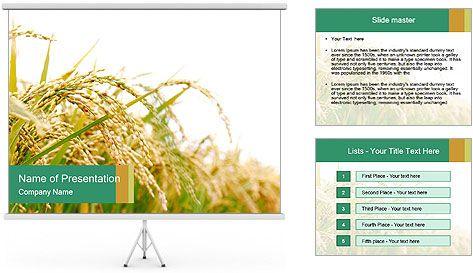 Rice farm powerpoint template rice farm powerpoint template toneelgroepblik Gallery
