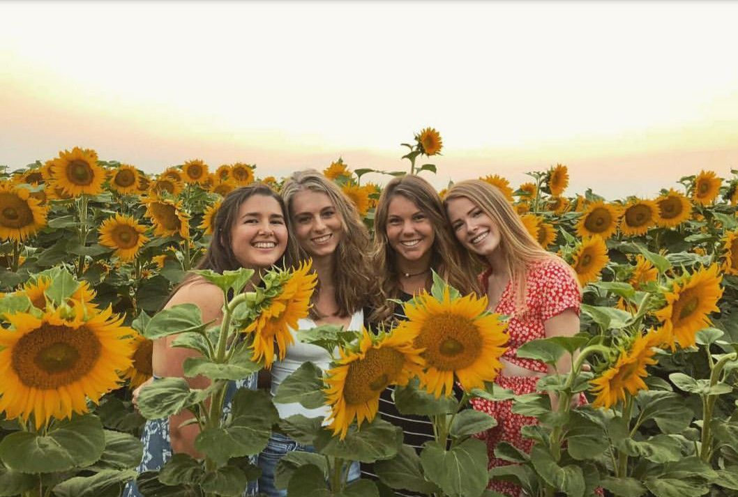 With your besties...in the sunflower field...in the golden hour! 🌻🌻🌻  #dopemoment | Sunflower field pictures, Field photoshoot, Sunflower  photography