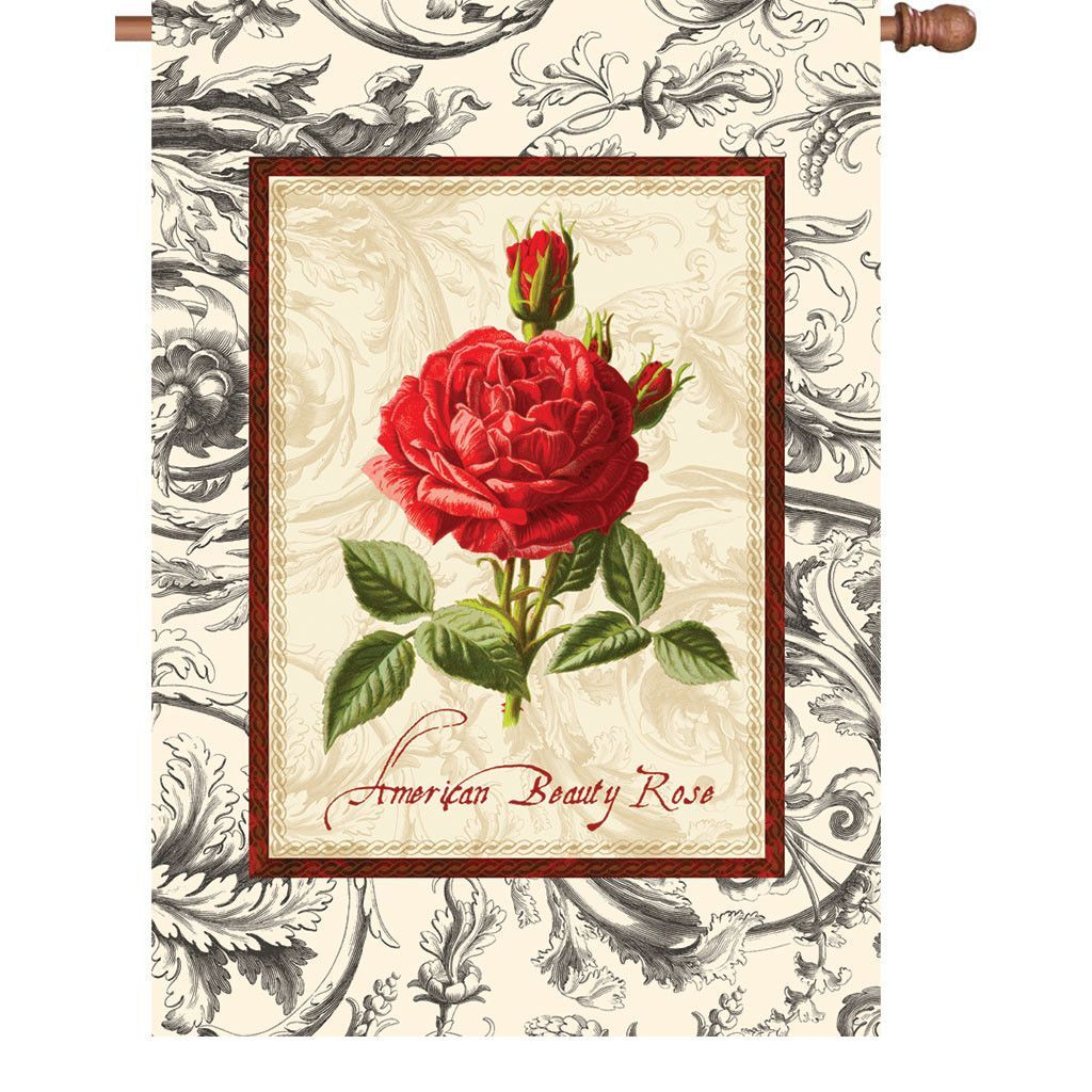 28 In Flag - American Beauty Rose