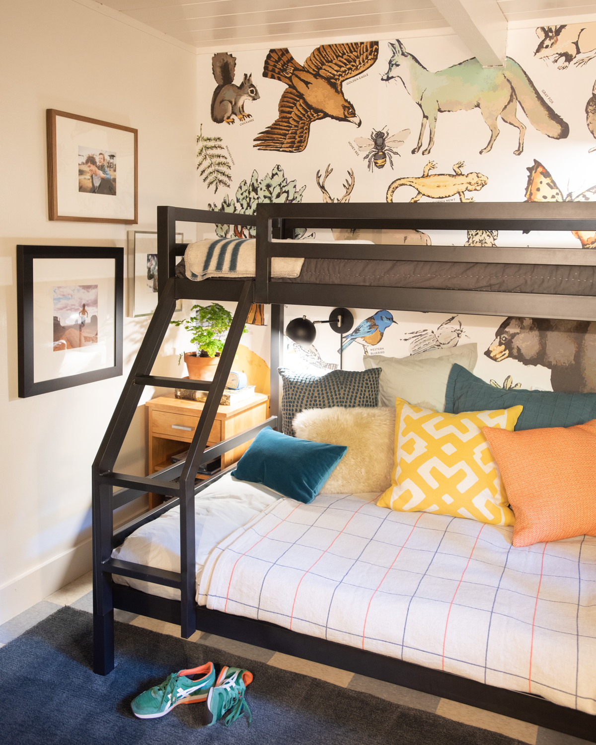 Kids Room Wallpaper Designs: The Treehouse: Guest Room / Boys Room Ideas