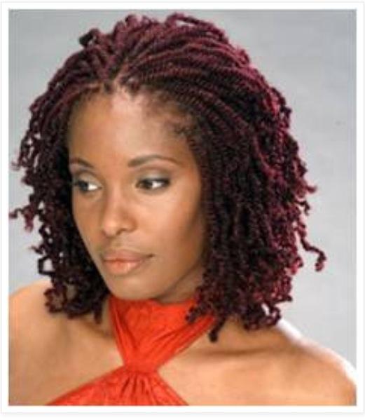 PrettyPosts.com   Nappy Crown Natural Hair Care   I heart natural ...