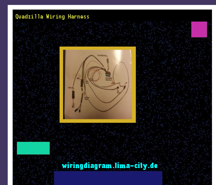 Quadzilla wiring harness. Wiring Diagram 18213. - Amazing Wiring Diagram  Collection | Harness, Wire, DiagramPinterest