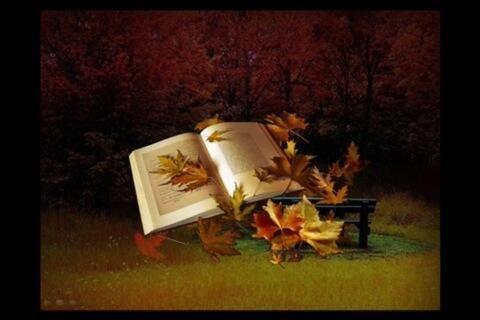 Livre en automne