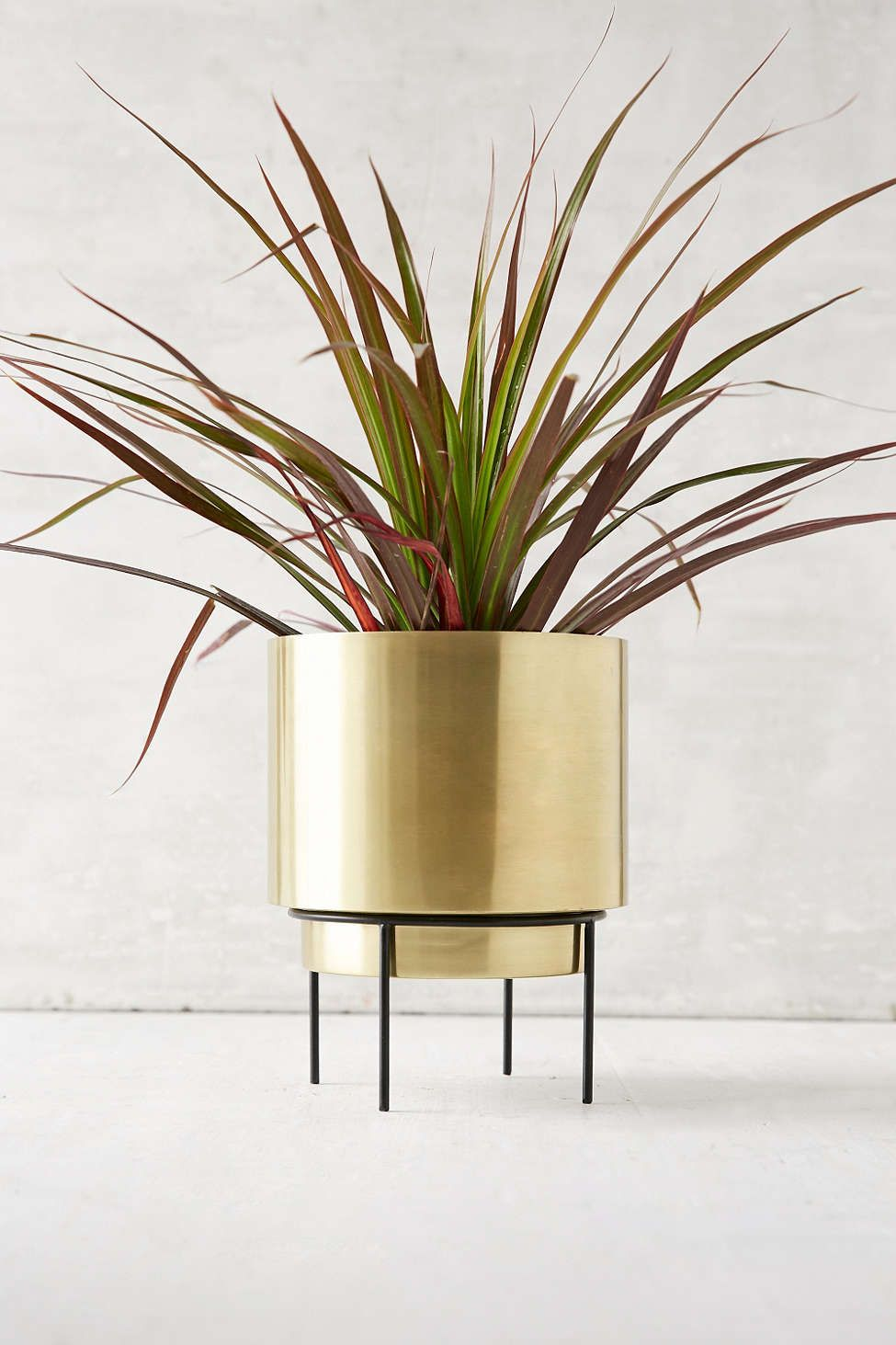 modern metal planter from urban outfitters. modern metal planter from urban outfitters  house plants