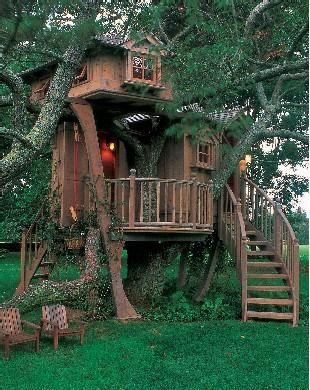 Joie De Vivre Cool Tree Houses Beautiful Tree Houses Tree House
