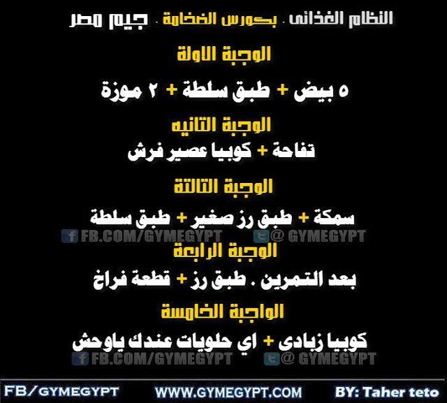 كورس الضخامة العضلية كمال أجسام جيم مصر Gymegypt جيم مصر Bodybuilding Gym