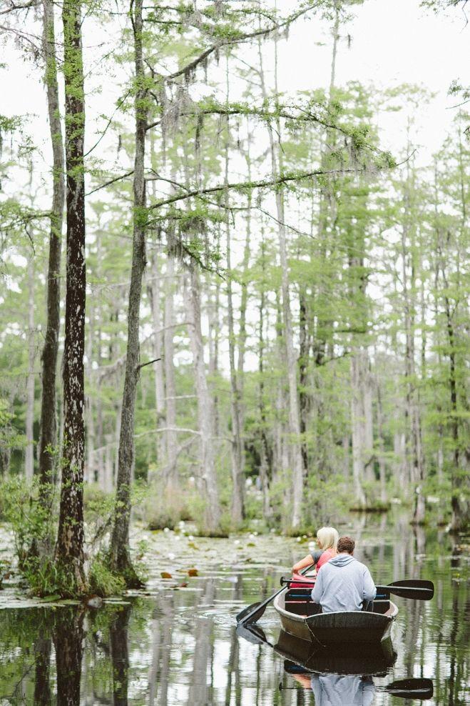 Charleston Sc Cypress Gardens Canoe Things To Do In Charleston Editorial Photography