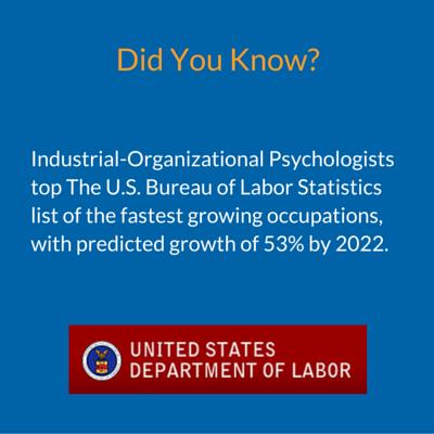Industrial Organizational Psychology Industrial Organizational
