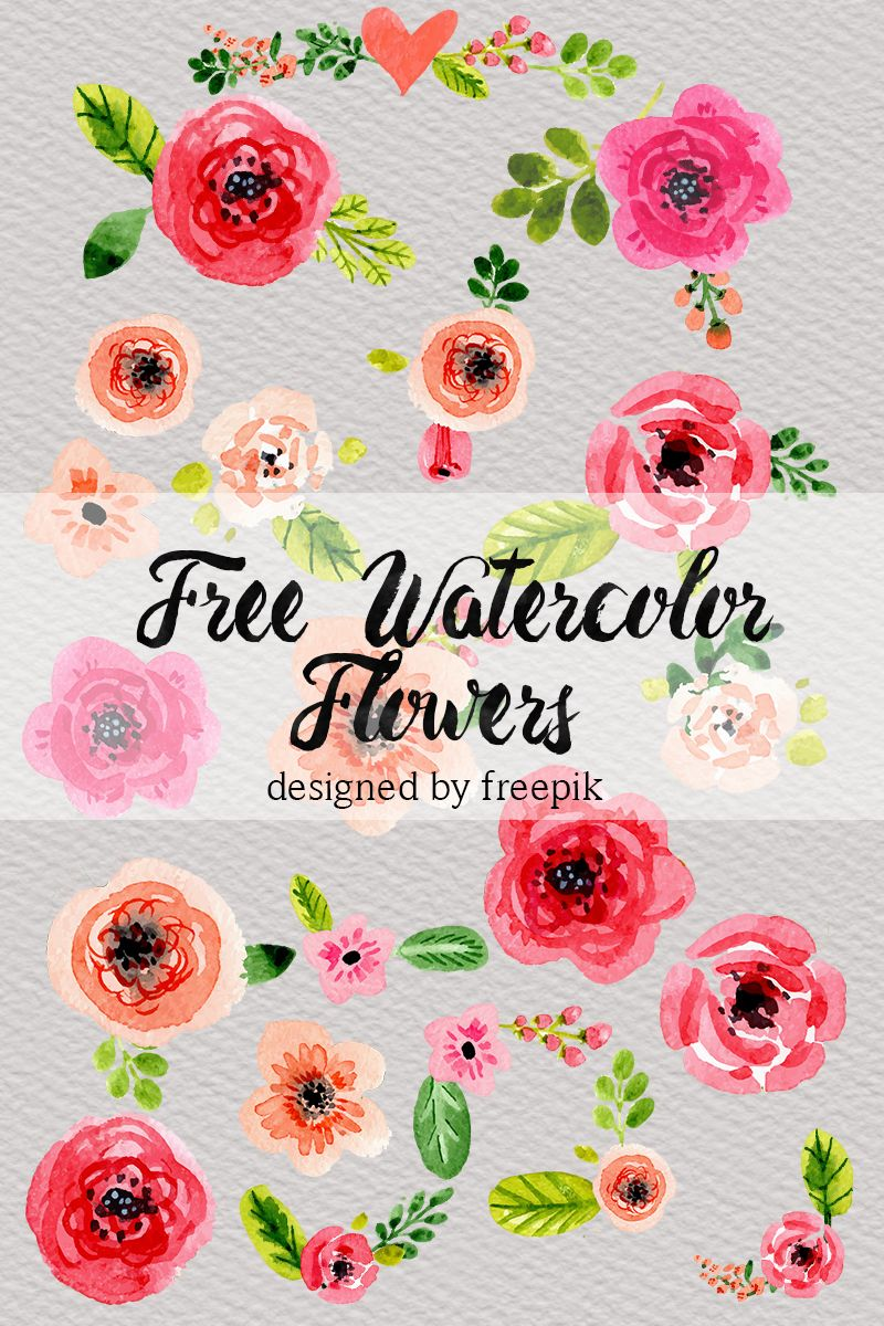 Free Watercolor Flower Clip Art Free Watercolor Flowers
