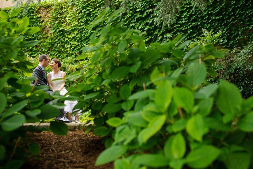 Through foliage