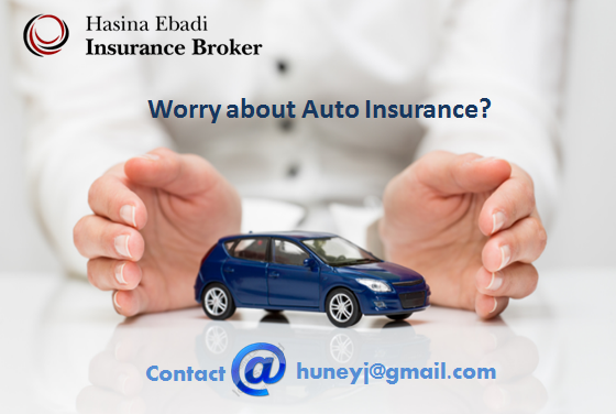 Home And Auto Insurance Quotes Cool Hasina Ebadi Is Offering The Best Auto Insurance Quote Hasina