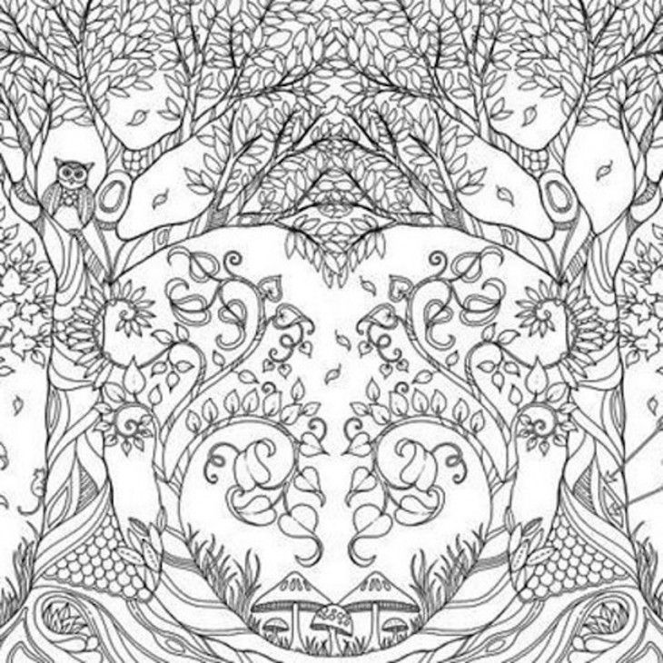 enchanted forest coloring book - Google Search | Adult Coloring ...