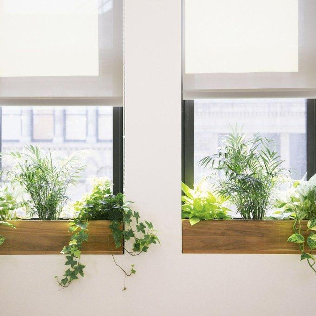 30 Unique Window Design Ideas With Plant For Home Venster Planten Kantoorplanten Tuinramen
