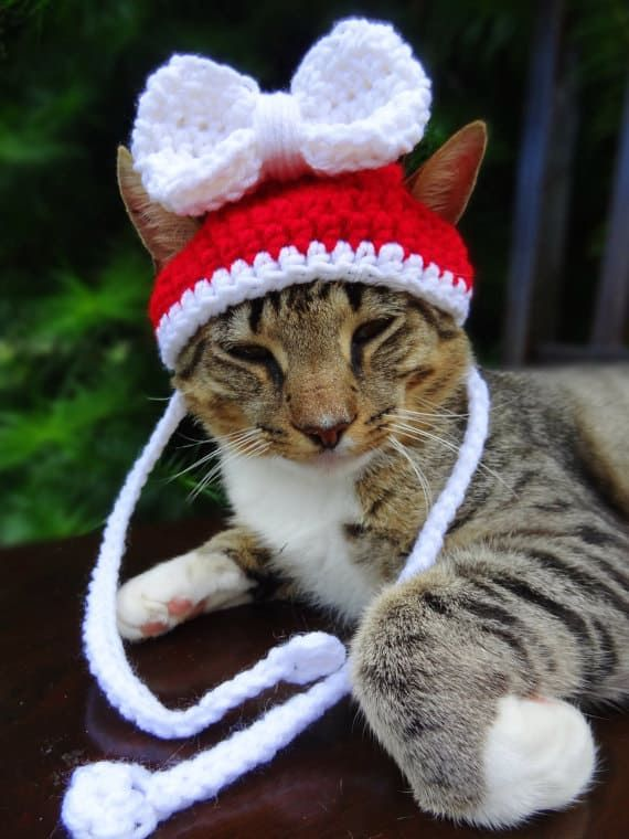 Cat Hat Crochet Pattern The Best Collection Ever Christmas Hat