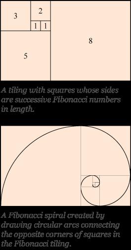 Golden Ratio In Logo Designs Beauty And Aesthetics Have Been Praised From Time Immemorial But Little Did Peopl Golden Ratio In Design Fibonacci Golden Ratio