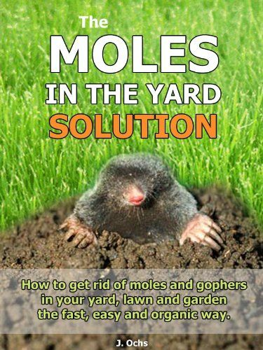 How To Get Rid Of Gophers Getting Rid Of Gophers Lawn Care Tips