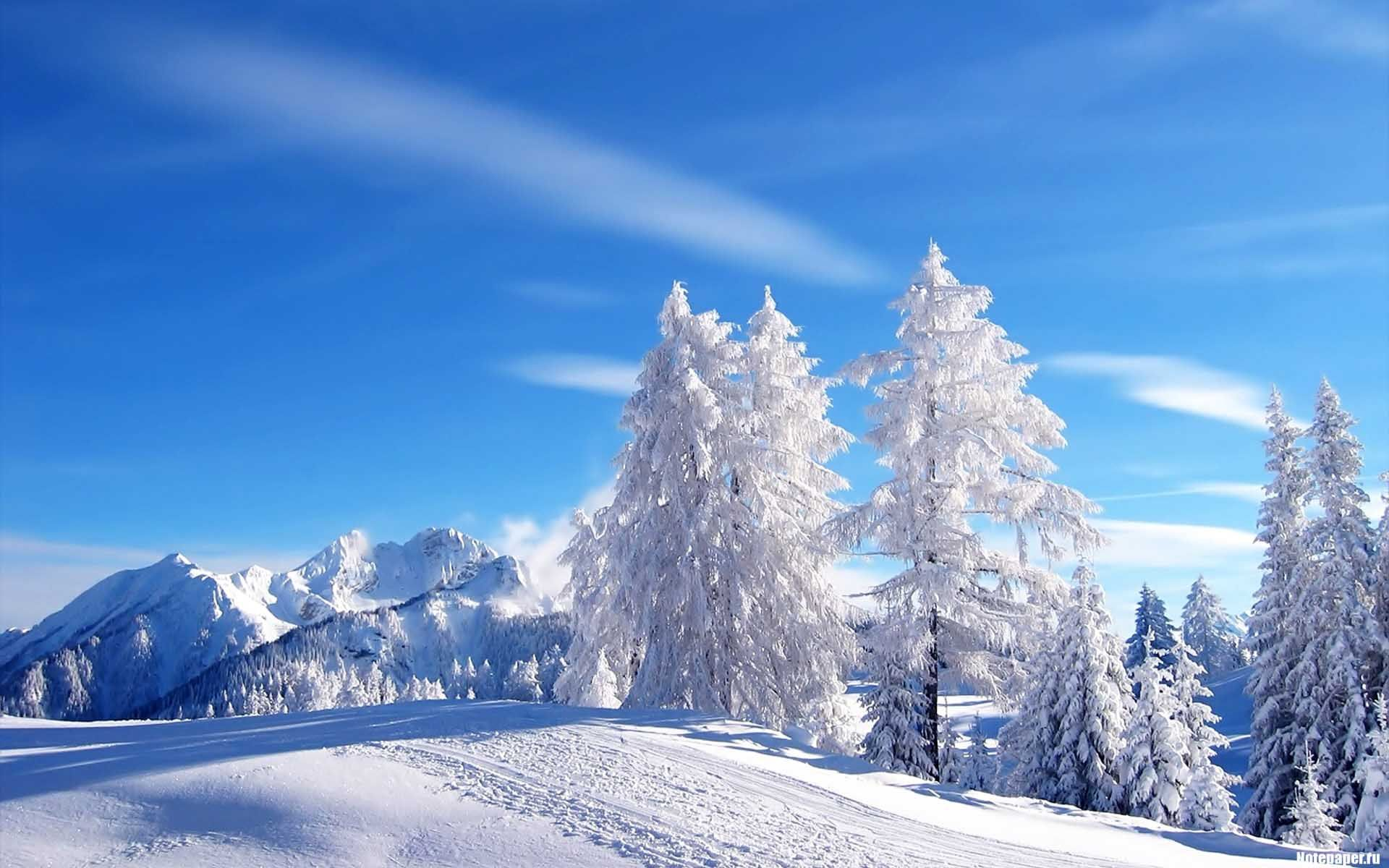 Snow Scenes Desktop Background Snow Scene Winter Landscape Winter Nature Winter Wallpaper