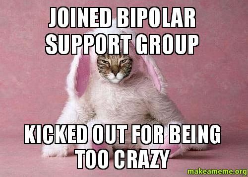 01202ed89cef02f97baf46cb6f96375c bipolar meme google search bi polar memes pinterest