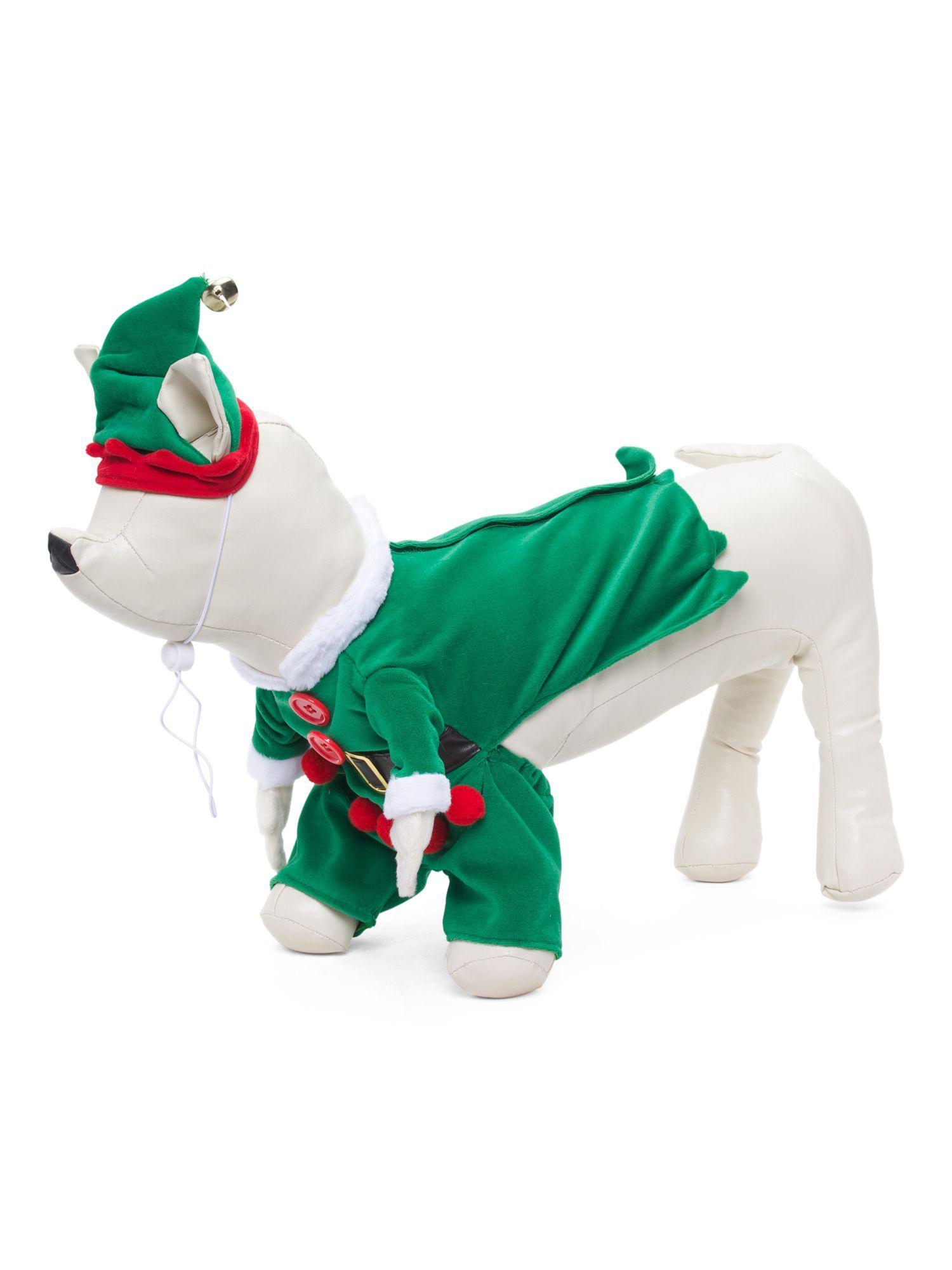 Elf With Legs Dog Costume  sc 1 st  Pinterest & Elf With Legs Dog Costume | Products