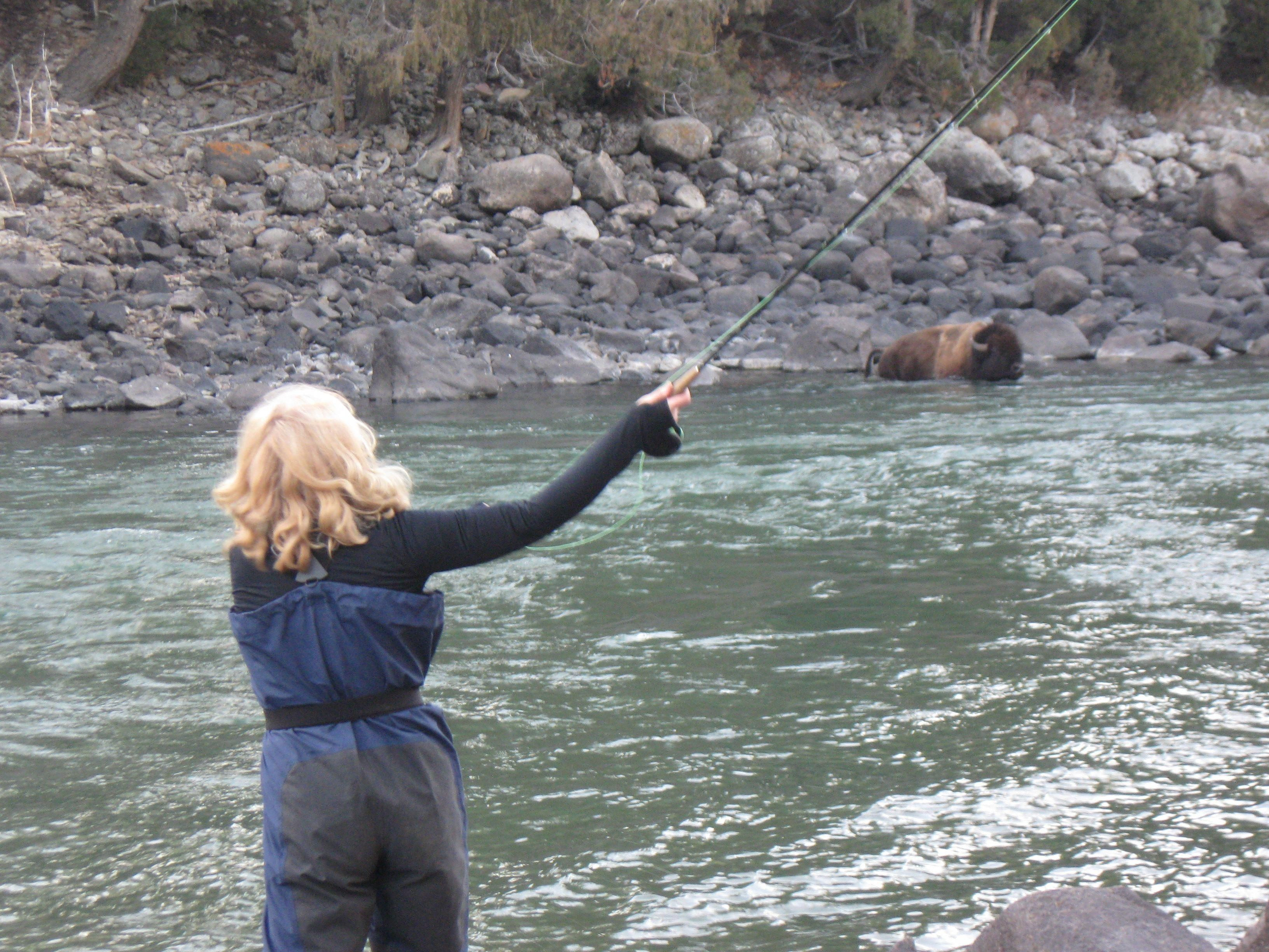 Fly Fishing With The Bison In Yellowstone National Park Fly Fishing Fishing Trip Beaches Near Me