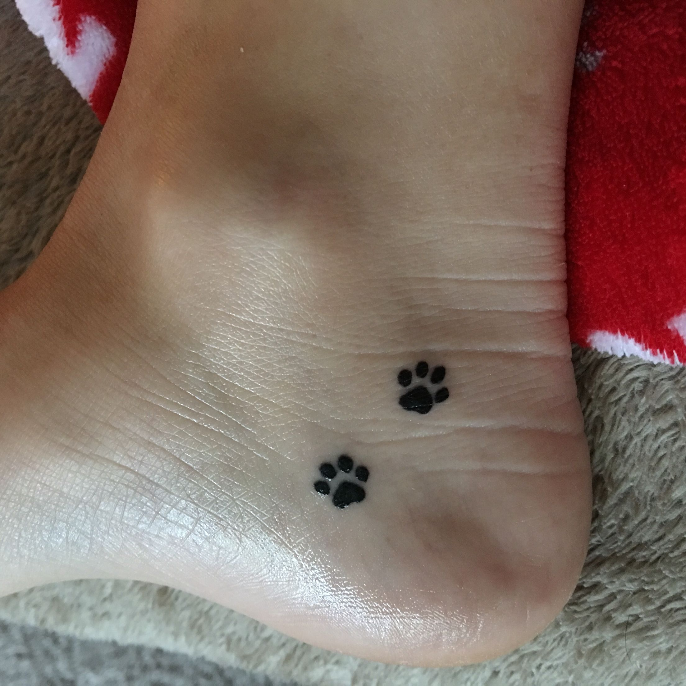 aede7fce19663 Just got this tattoo. Small paw prints on the inside my foot I LOVE IT!