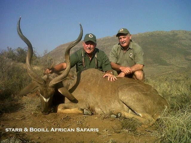 Check out photos from Dick Czarniecki's safari with Starr & Bodill African Safaris. https://www.facebook.com/media/set/?set=a.320990044711464.1073741831.154986967978440&type=3