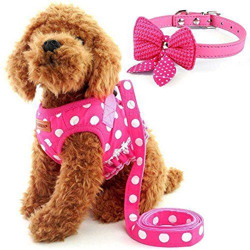 Cute Small Dog Harness Ladies Polka Dots Dog Vest Harness Set