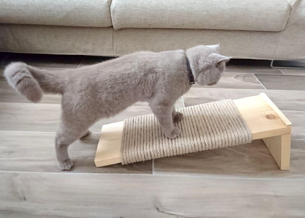diy a sleek and modern cat scratcher katzendinge pinterest katzen kratzbaum und katzenm bel. Black Bedroom Furniture Sets. Home Design Ideas