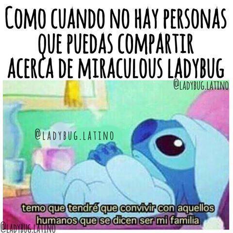 Resultado De Imagen Para Memes De Miraculous Ladybug En Espanol Memes De Miraculous Ladybug Memes Memes Divertidos