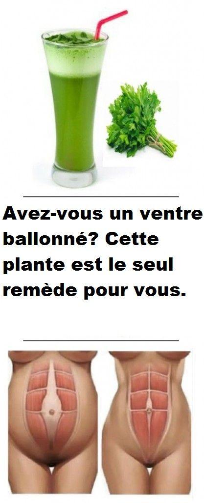 avez vous un ventre ballonn cette plante est le seul. Black Bedroom Furniture Sets. Home Design Ideas