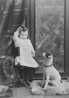 The Dusty Victorian Victorian Dogs Dogs And Kids Vintage Dog Baby Dogs