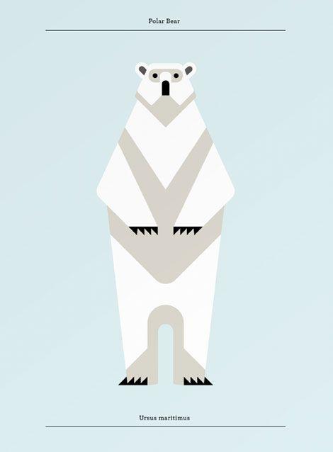 Polar Bear- Josh Brill