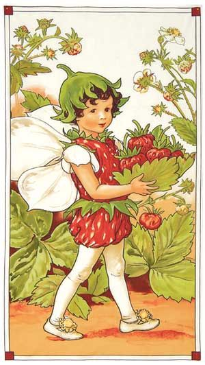 Strawberry Fairy Strawberry Fields Forever Panel