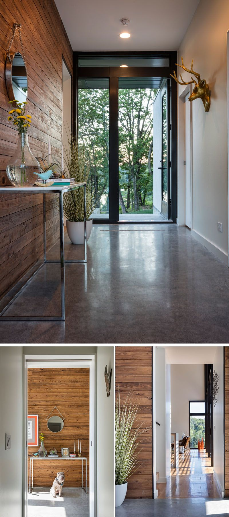 In this modern house, the entryway has a polished concrete floor and a wood  accent