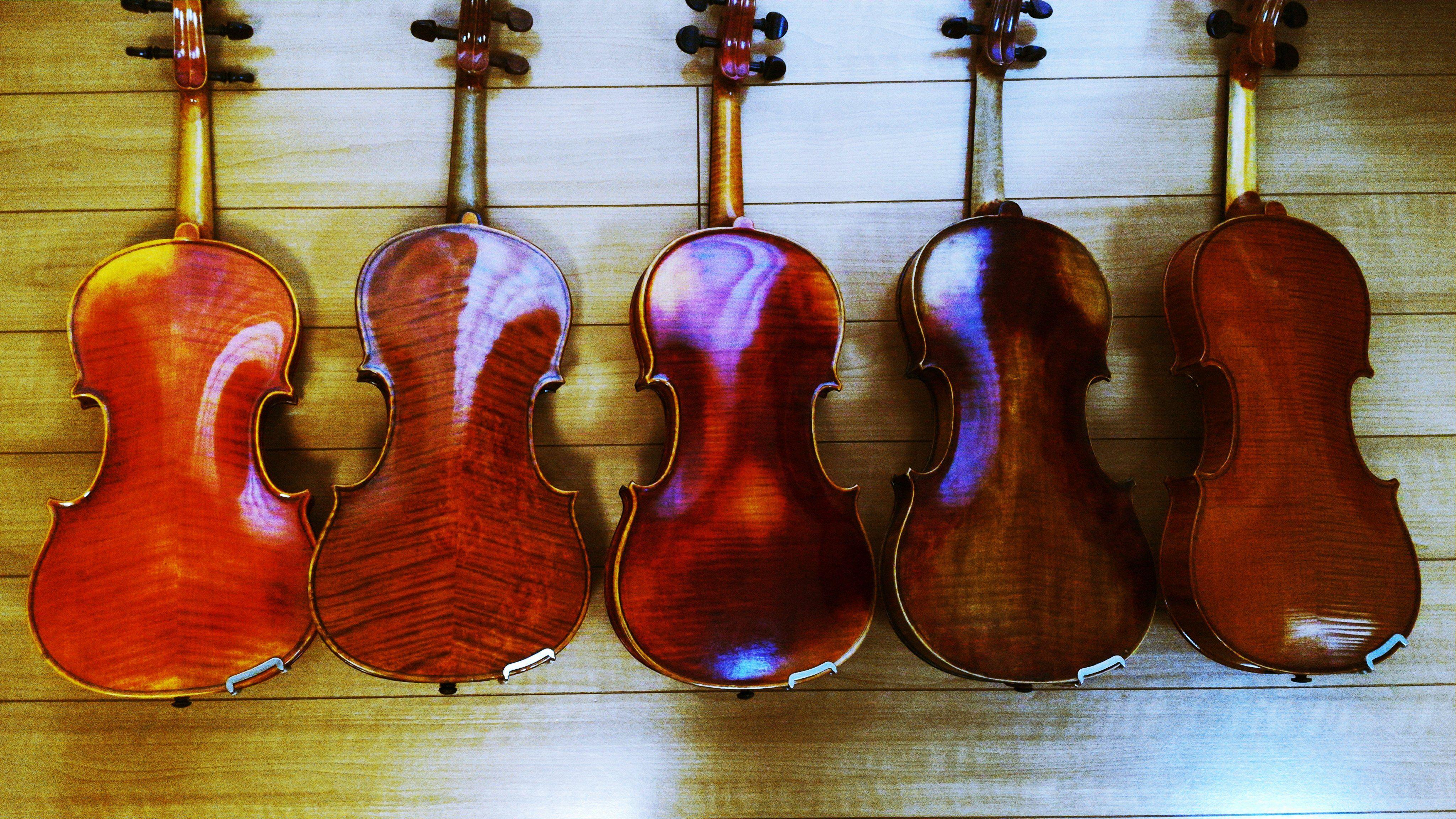 Violin S Back Shows Themself Beautiful バイオリンは背中で語る