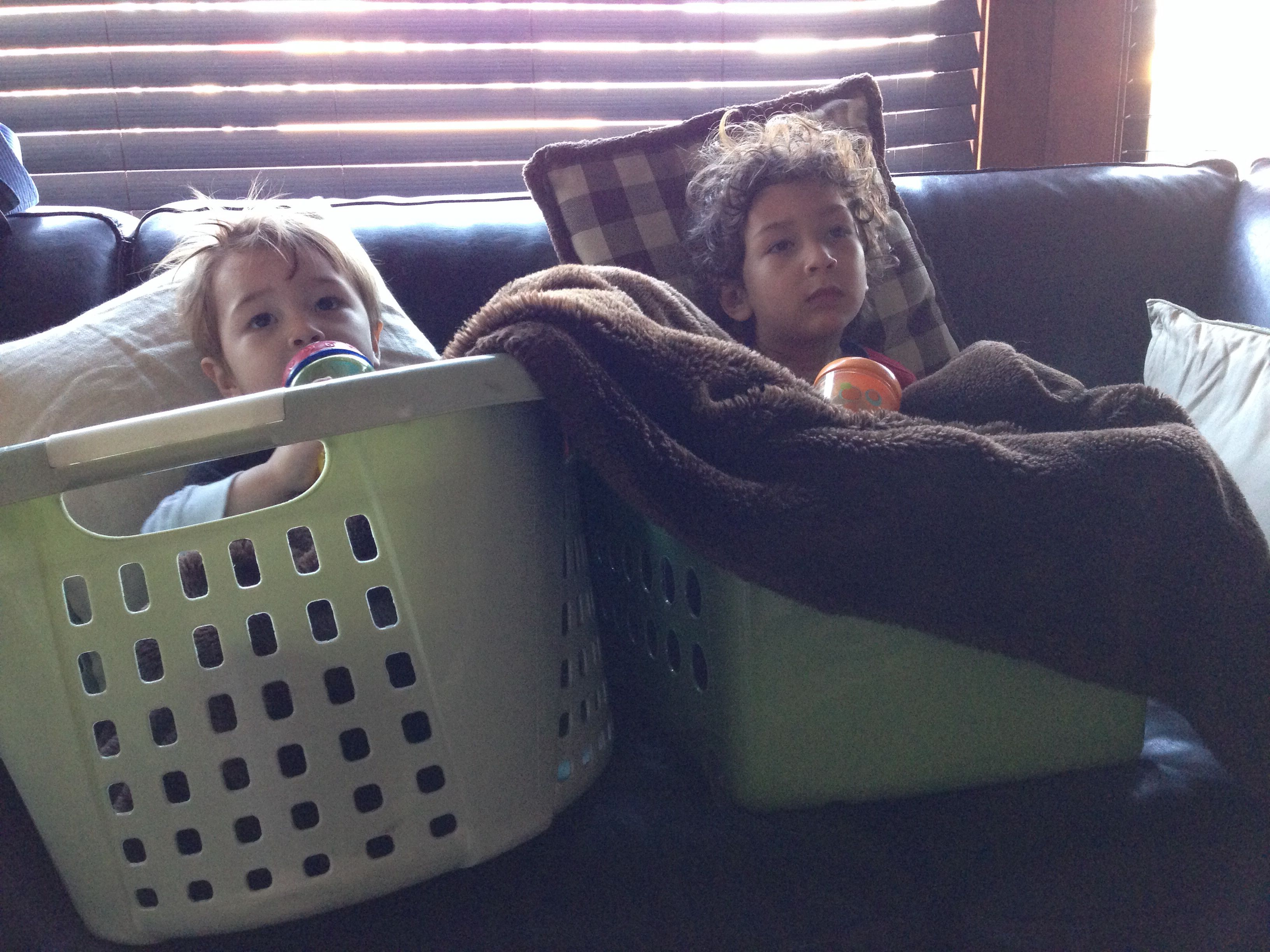 Kids cuddle in their baskets while sick with colds - perfect place to recoup 1167012543a6