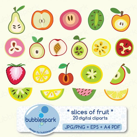 Slices Of Fruit Digital Clip Art Summer By Bubblesparkstore 3 80