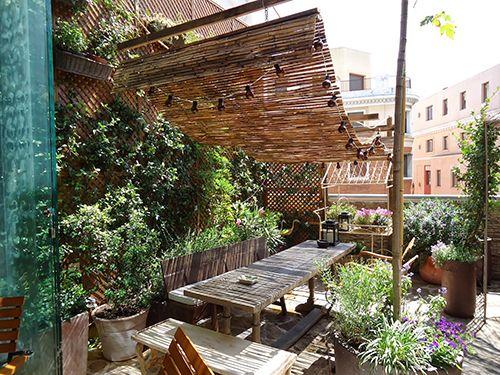 Plantas Para Terraza En Madrid Google Search