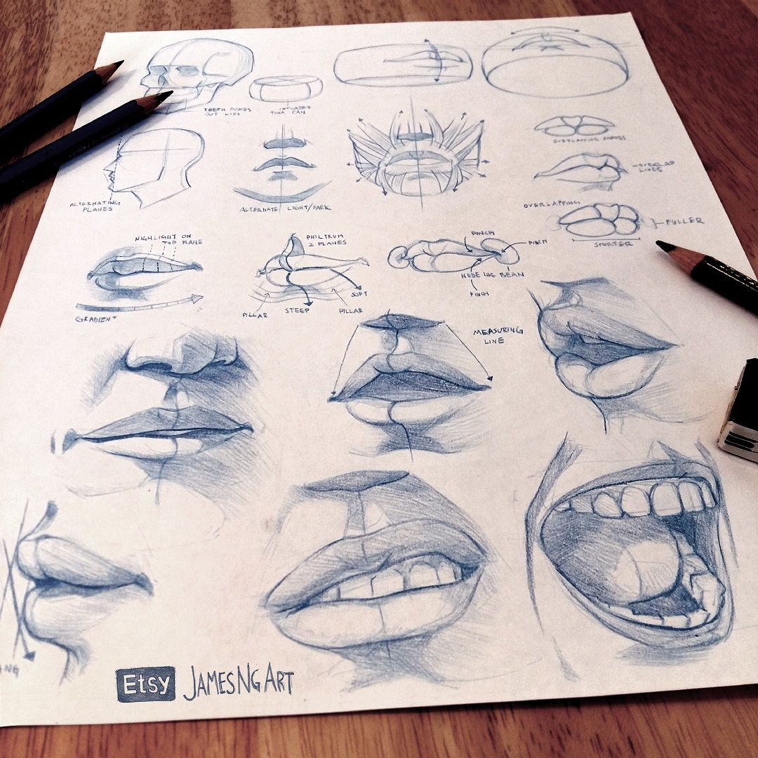 Lips anatomy sketches from reference :) @jamesngart #Sketch #Anatomy ...