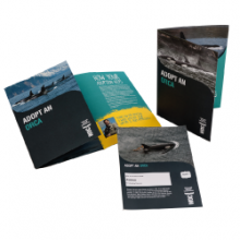 Personalised certificate featuring your adopted orca plus lots of information on how you are helping to protect them.