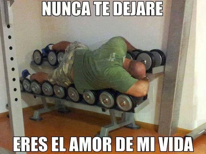 Del Amor De Mi Vida Gym Memes Funny Gym Humor Fitness Jokes