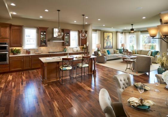 Shenandoah Collection At Stapleton Stapleton Denver Open Concept Kitchen Living Room Living Room And Kitchen Design Open Plan Kitchen Living Room