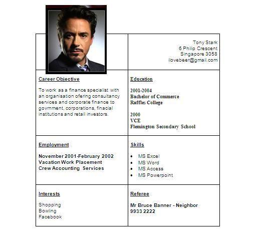 Fake Tony Stark Resume