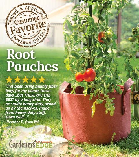 A Review of a Customer Favorite! Root Pouch Grow Bags are effective and ideal for various plants! Both degradable and non-degradable (reusable) bags are available, and in several colors. #Spring #Tomatoes #Gardening #Vegetables  |  GardenersEdge.com