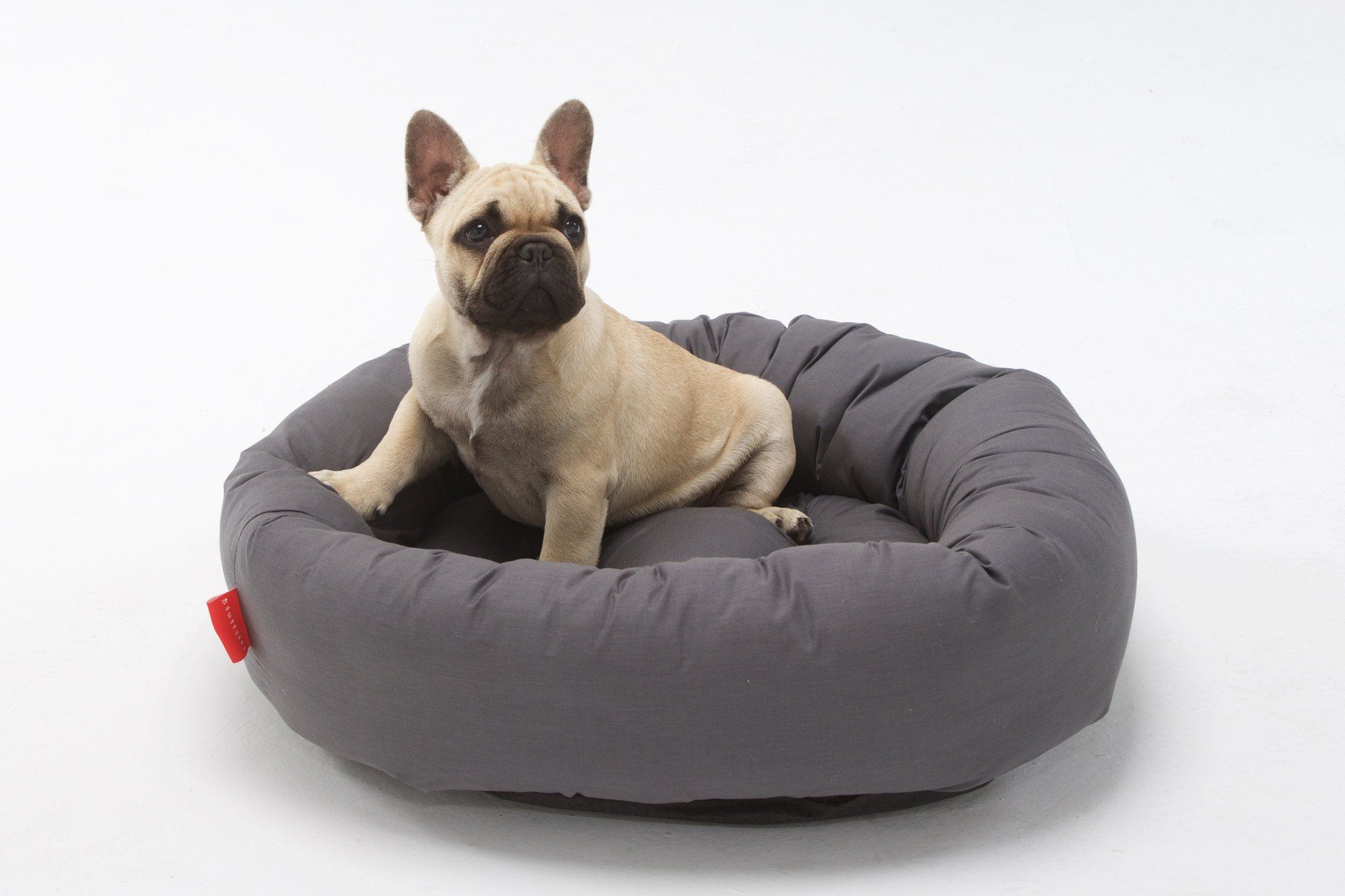 Uvo bed for small dogs1 Dog accessories, Dog bed luxury