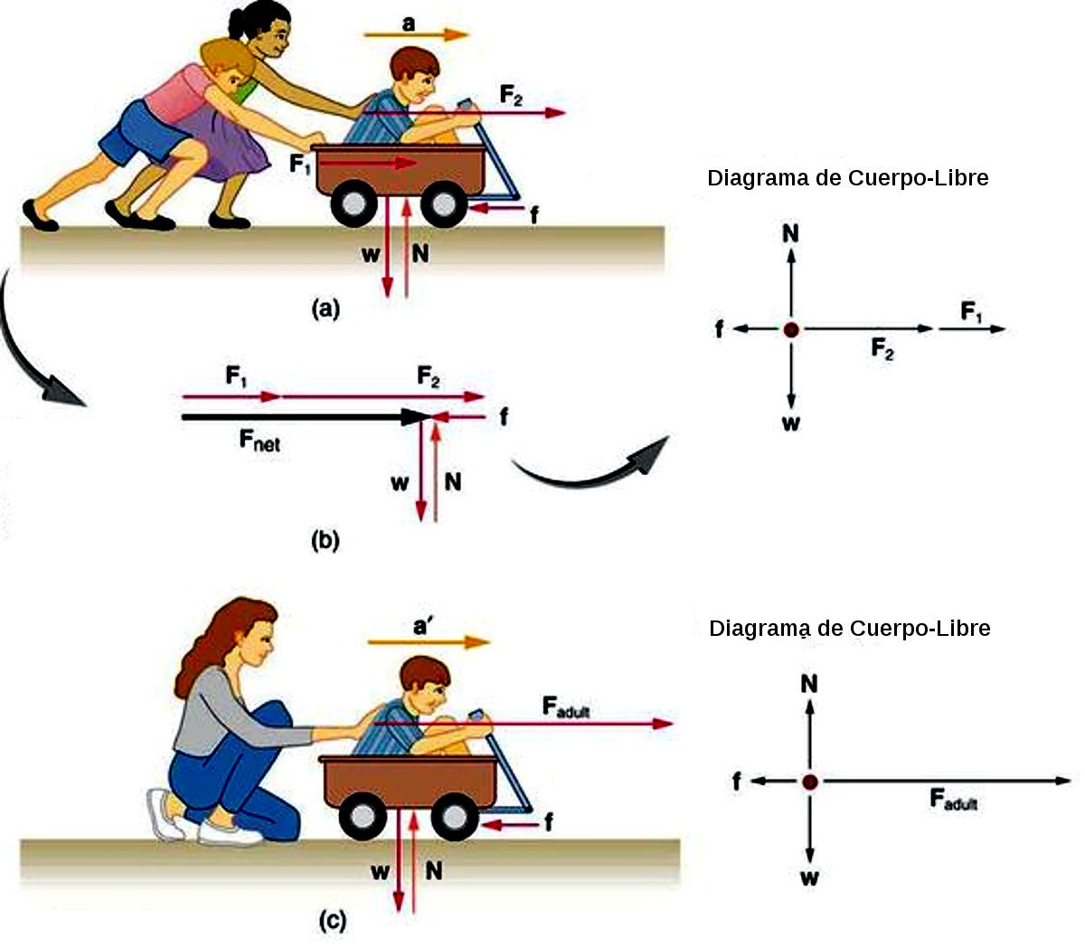 Segunda Ley De Newton Physics Formulas Physics Classroom Physics And Mathematics