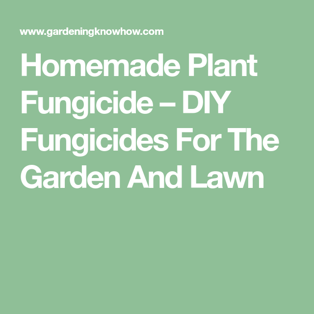 Fungicide For Plants: How To Make Your Own Fungicide ... on homemade plant hormone, sulfur plant fungicide, homemade plant water, homemade plant fertilizer, homemade plant insecticide, homemade plant food, homemade plant pesticide,