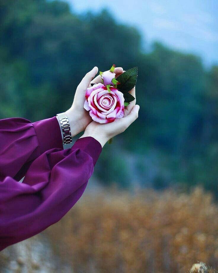 цветы со смыслом фото оказывается, это лососёвая