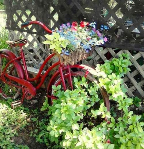 Flea Market Gardening ~ collection of vintage bikes in the garden