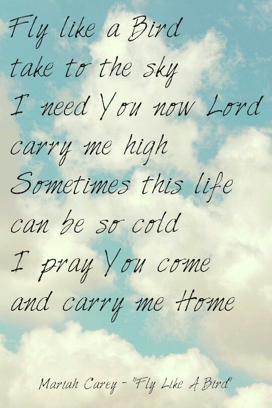 Fly Like A Bird Take To The Sky I Need You Now Lord Carry Me High